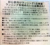 2012.4.7.JPG